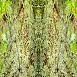 Geißenbaum