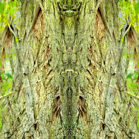 Geissenbaum