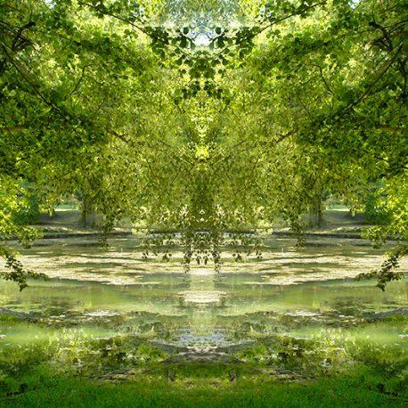 See-Baum-Gespraeche
